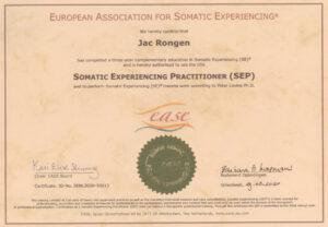 Certificaat SE Practitioner